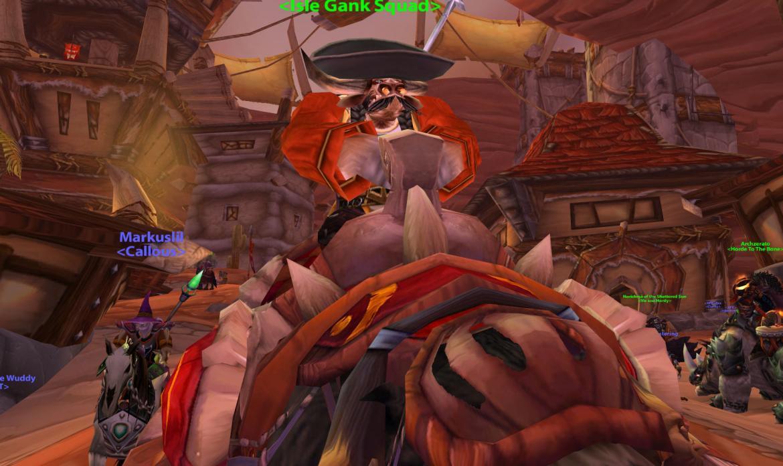 War Bear Wow a Sombrero on a War Bear